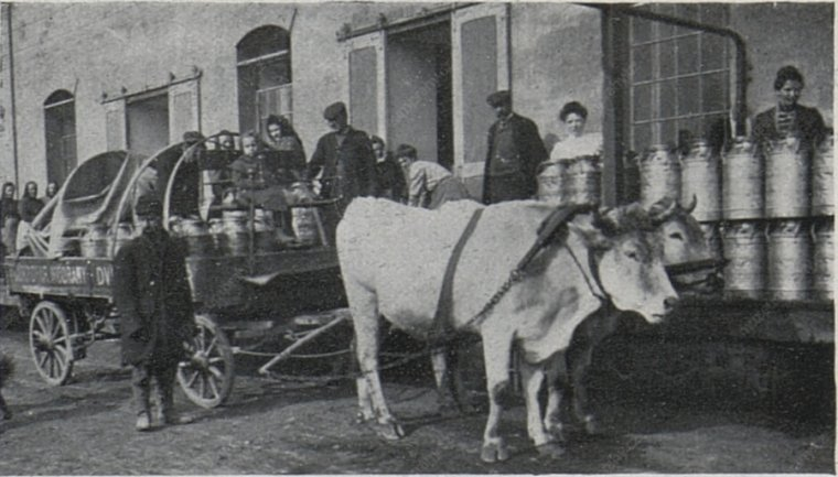 9_-_MMP_-_Cesky_svet_26,_09-04-1909_web.JPG